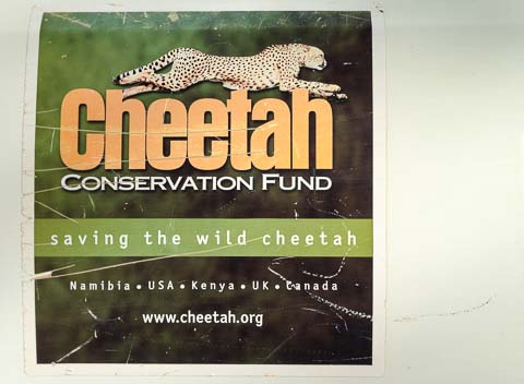 Cheetah Conservation Fund, Namibia