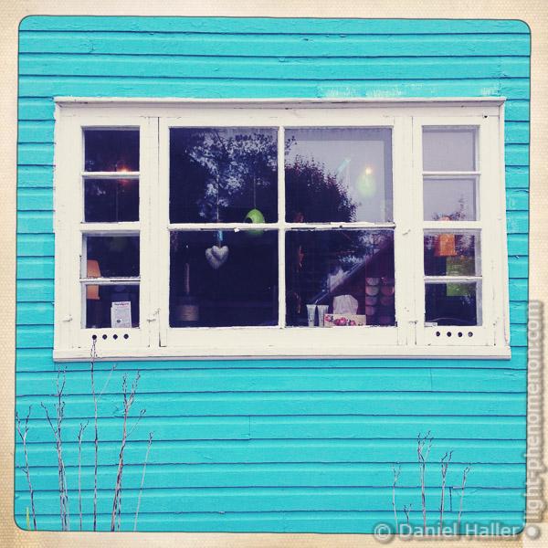 Window-1161