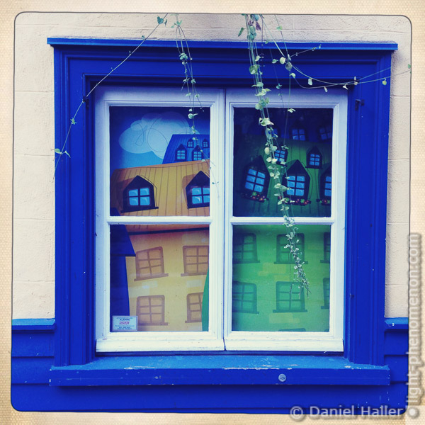Window-1241