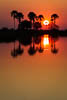 Sunset, Okavango Delta, Botswana, Southern Africa, Copyright (c) Daniel Haller - light-phenomenon.com. All rights reserved.