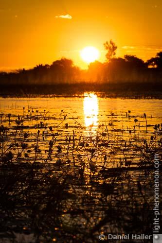 Chobe River, Botswana, Copyright: Daniel Haller, light-phenomenon.com